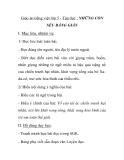 Giáo án tiếng việt lớp 5 - Tập đọc : NHỮNG CON SẾU BẰNG GIẤY