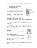 Bài giảng khoan dầu khí tập  2 part 10