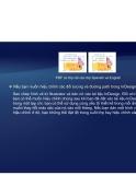 Tự học Indesign CS2 : Đồ họa part 2