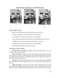 Kỹ thuật tạo thuận cảm thụ bản thể thần kinh - cơ part 4