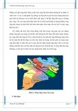 Tài liệu về Ô nhiễm đất đồng bằng sông Cửu Long - part 2