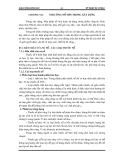 Giáo trình kỹ thuật thi công I - Phần 1 Công tác thi công đất - Chương 7