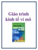 Giáo trình Kinh tế vi mô - PGS.TS Phí Mạnh Hồng