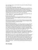 Giáo trình thủy sinh đại cương - Đại học An Giang - part 8