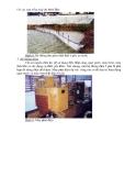 Kỹ thuật nuôi tôm bán thâm canh - thâm canh thân thiện với môi trường part 2