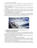 Kỹ thuật nuôi tôm bán thâm canh - thâm canh thân thiện với môi trường part 3