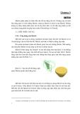 Giáo trình Hướng dẫn sử dụng Inventor - Chương 2