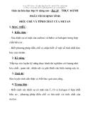 hµng c©u hi , gi¸o ¸n , kinh nghi m...  Giáo án hóa học lớp 11 nâng cao - Bài 38 : THỰC HÀNH PHÂN TÍCH ĐỊNH TÍNH ĐIỀU CHẾ VÀ TÍNH CHẤT CỦA METAN