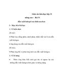 Giáo án hóa học lớp 11 nâng cao - Bài 51 dẫn xuất halogel của hiđrocacbon