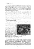 Giáo trình chăn nuôi dê part 2