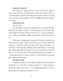 NUÔI THÂM CANH TÔM ĐẢM BẢO AN TOÀN VỆ SINH THỰC PHẨM THEO MÔ HÌNH GAqP part 6