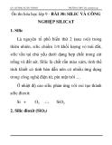 Ôn thi hóa học lớp 9 -   BÀI 30: SILIC VÀ CÔNG NGHIỆP SILICAT
