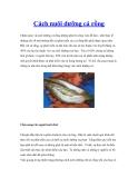 Cách nuôi dưỡng cá rồng