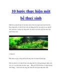 10 bước thực hiện một bể thuỷ sinh