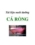 Tài liệu nuôi dưỡng cá Rồng