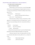 Hạch tóan lưu chuyển hàng hóa trong Cty Dịch vụ Hoàng Khuyên - 2