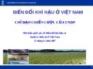 BIẾN ĐỔI KHÍ HẬU Ở VIỆT NAM CHỈ ĐẠO CHIẾN LƯỢC CỦA UNDP