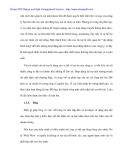 THực trạng doanh nghiệp nhỏ và áp dụng phát triển marketing cho Cty quảng cáo Phước Sơn - 4