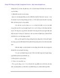 Phân tích tình hình cho vay tiêu dùng tại Ngân hàng ACB - 2