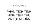 CHƯƠNG V  PHÂN TÍCH TÌNH HÌNH TIÊU THỤ VÀ LỢI NHUẬN
