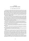ĐỘNG LỰC TÀU THUỶ - PHẦN 2 THIẾT BỊ ĐẨY TÀU THỦY - CHƯƠNG 18