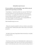 Hướng dẫn bảo quản Ván sàn tre