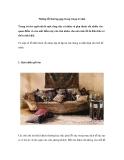 Những lỗi thường gặp trong trang trí nhà