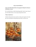 Trang trí nhà đón Hallowen