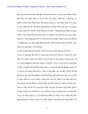 Tình hình kinh doanh hiểm gián đoạn kinh doanh tại Bảo Việt hà Nội - 4