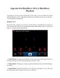 chụp ảnh trên BlackBerry OS 6 và BlackBerry PlayBook