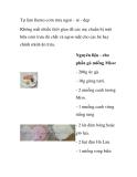 Tự làm Bento cơm trưa ngon - rẻ - đẹp