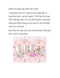 8 kiểu nail lãng mạn dành cho cô dâu
