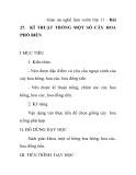 Giáo án nghề làm vườn lớp 11 - Bài 27. KĨ THUẬT TRỒNG MỘT SỐ CÂY HOA PHỔ BIẾN