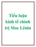 Tiểu luận kinh tế chính trị mac lênin