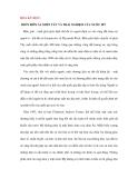 HOA KỲ HỌC: MIỀN BIÊN ẢI, MIỀN TÂY VÀ TRẢI NGHIỆM CỦA NƯỚC MỸ