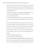 Nâng cao hiệu quả kinh doanh Xuất nhập khẩu y tế ở cty VIMEDIMEX - 4