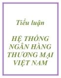 Tiểu luận HỆ THỐNG NGÂN HÀNG THƯƠNG MẠI VIỆT NAM