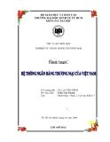 """Tiểu luận môn học nghiệp vụ ngân hàng thương mại """"Hệ thống ngân hàng thương mại của Việt Nam"""""""