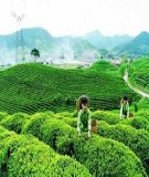 Khái quát địa lí tự nhiên của tỉnh Phú Thọ