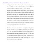 Mở rộng thị trường xuất khẩu tổng hợp tại Cty cung ứng tàu biển Quảng Ninh - 5