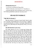 Phòng trừ sâu bệnh hịa cây cảnh part 8