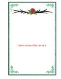 Giáo án tích hợp Tiếng Việt  lớp 2