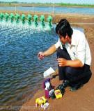 Giáo Trình Bệnh học thủy sản phần 1 - THs. GV. Kim Vặn Vận