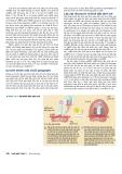 Công nghệ gene đến Protein part 4