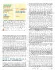 Công nghệ gene : Các hệ gene và sự tiến hóa của chúng part 4
