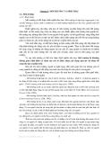 Bài giảng Môi trường và con người - Chương 1