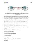 Giáo trình phân tích khả năng ứng dụng phương pháp định tuyến các giao thức trong cấu hình ACDP p2