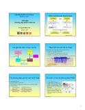 Địa kỹ thuật : Plaxis v.8.2 -  Giới thiệu Phương pháp phần tử hữu hạn