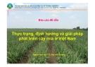 Thực trạng, định hướng và giải pháp phát triển cây mía ở Việt Nam