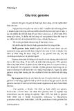 Sinh học phân tử - Chương 2